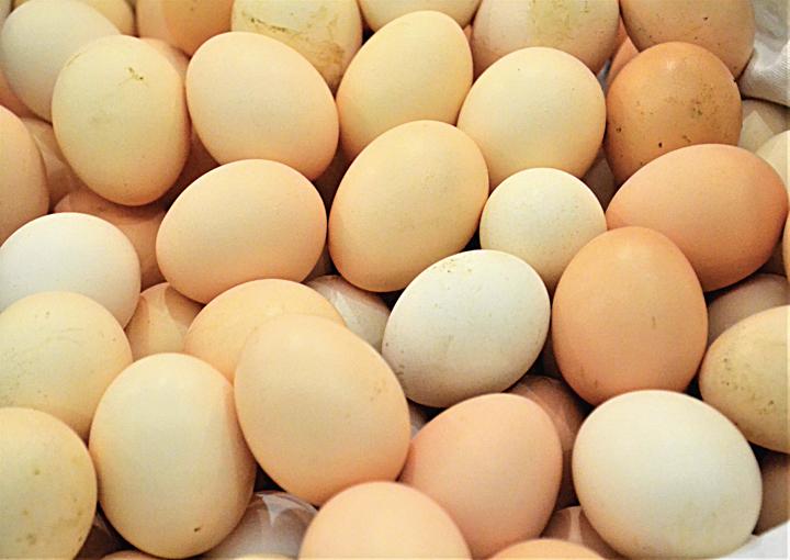تفسير حلم البيض المسلوق